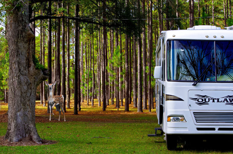 boondockers welcome free rv camping Miller Pond