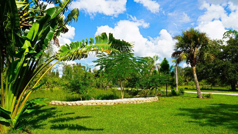 Yaj's Fort Myers Florida